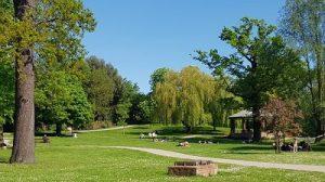Raphaels Park Romford
